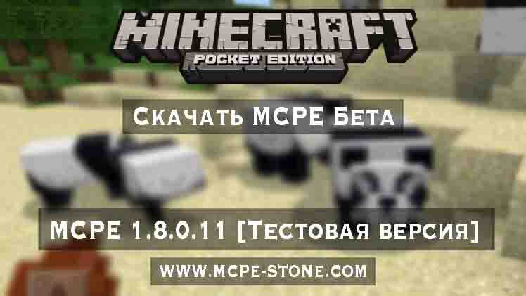 scaciati minecraft pocket edition
